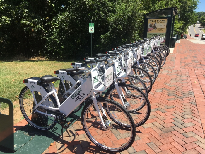 A row of white bikes, waiting for riders. Photo: Mary Newsom