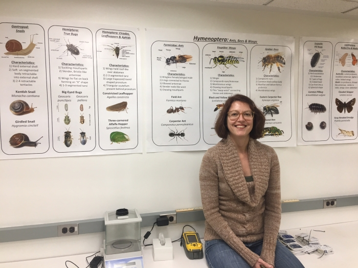 Associate Professor Sara Gagné sits in front of posters showing insect species. Photo: Mary Newsom