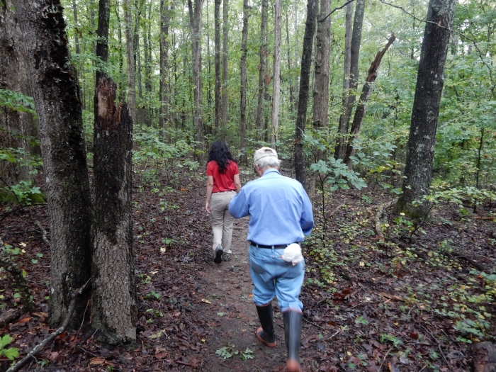 Jim Matthews, botanist, treks the woods at Reedy Creek Nature Preserve with herbarium curator Catherine Luckenbaugh.