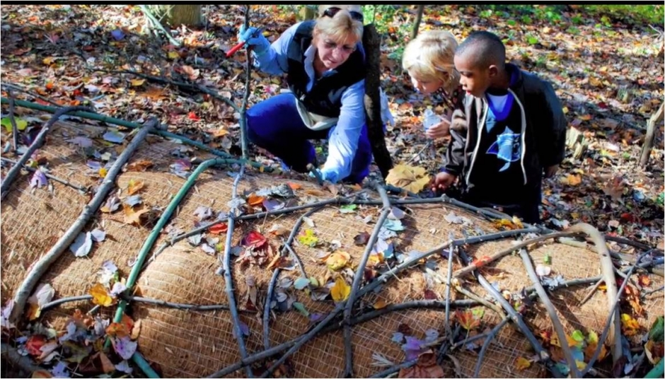 C. Eco-art involves educational aspects to reveal natural processes.