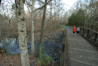 Trees and pedestrians along a boardwalk through the Clark's Creek Greenway in the winter. Photo: Nancy Pierce
