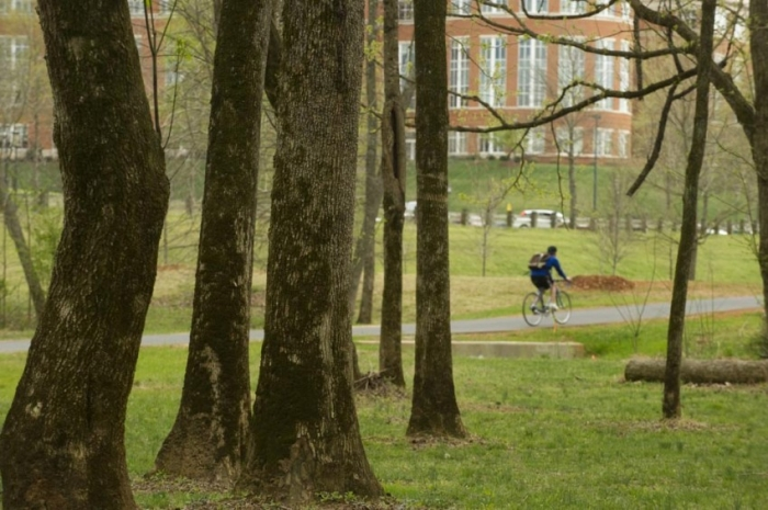 Bike rider amid the trees at Toby Creek Greenway through the UNC Charlotte campus. Photo: Nancy Pierce